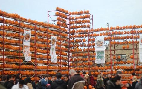 Highwood pumpkin festival raises money for autism